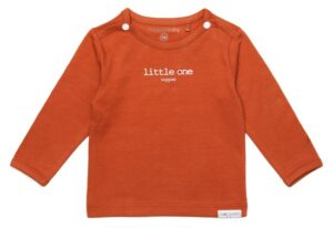 Noppies baby t-shirt Hester spicy ginger